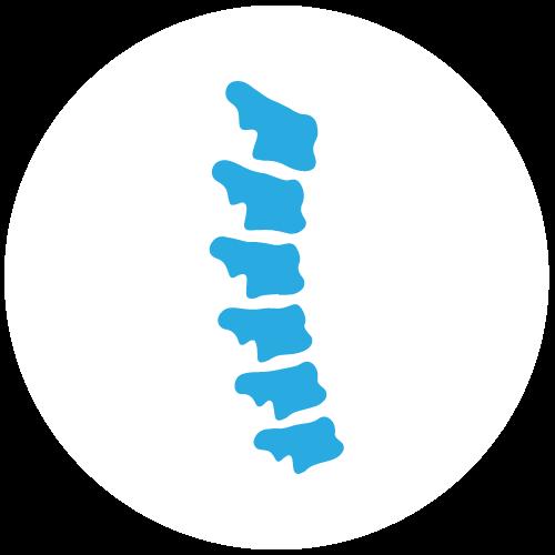 Icon Indikation Wirbelsäule